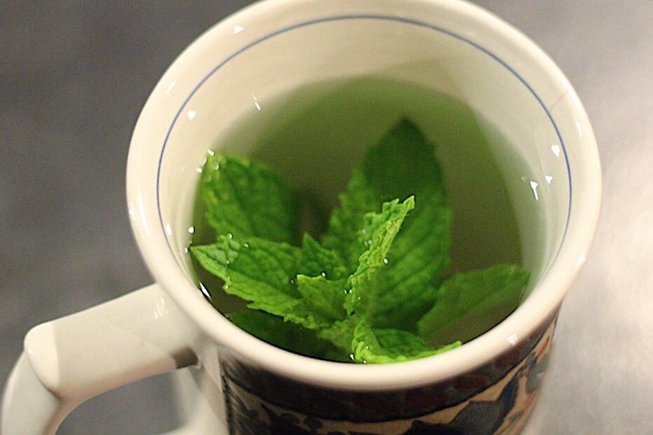 Kate's Fresh Peppermint Tea