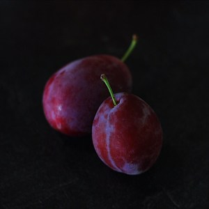 Vancouver Island Purple Plums