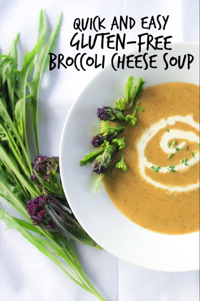 Quick Easy Healthy Broccoli Cheese Soup