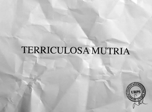 """Sabrina D'Alessandro, """"TERRICULOSA MUTRIA"""", video 2015, URPS, Ufficio Resurrezione Parole Smarrite, Divisione Mutoparlante, SkyArte 2016"""