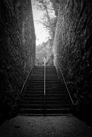 steps-in-monochrome
