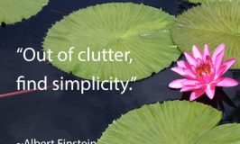 Out of clutter, find simplicity Albert Einstein