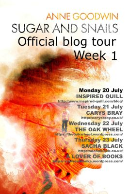 Blog tour week 1