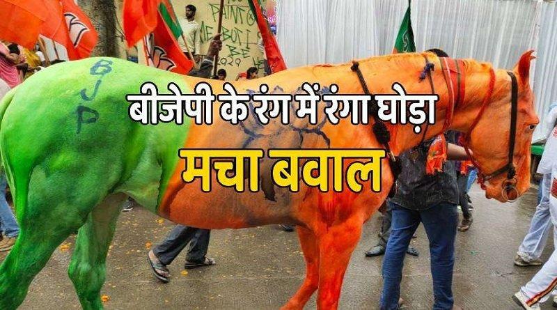 Jan Ashirwad Yatra: सिंधिया की रैली में BJP के झंडे के रंग में रंगा घोड़ा, मेनका गांधी की संस्था ने की FIR