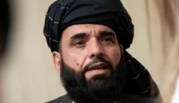 'नहीं देंगे दखल', कश्मीर पर तालिबान ने साफ किया रुख, पाकिस्तान को लगेगा तगड़ा झटका