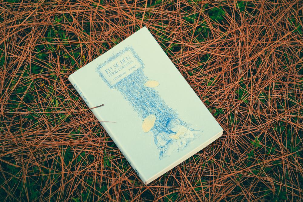 Review sách Em sẽ đến cùng cơn mưa – Ichikawa Takuji