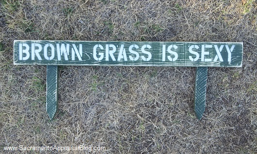 brown grass is sexy sign