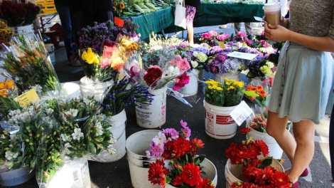 Midtown Farmers Market Keeps Growing With Every Season