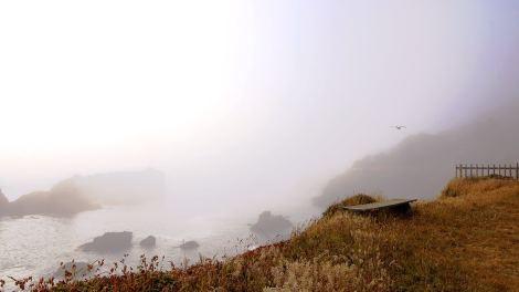 Mendocino Cliffs - Fog & Light