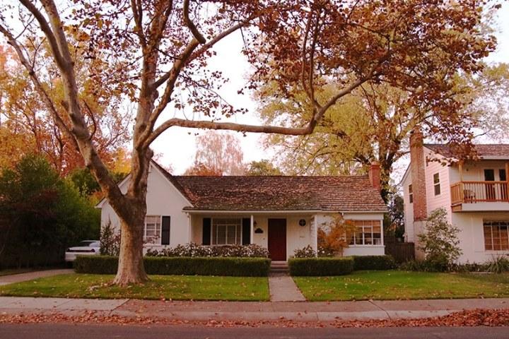 Fall in Sacramento 2017 12 720x480 - Sacramento: Best City in California for Fall Colors?
