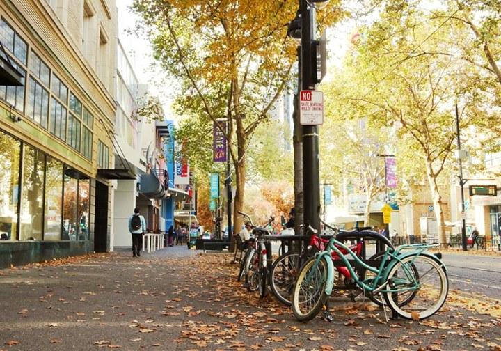 Fall in Sacramento 2017 25 720x504 - Sacramento: Best City in California for Fall Colors?