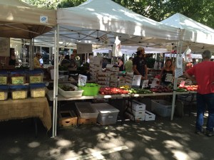 Picture of ventors at farmers market