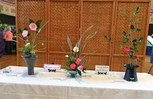 Picture of Sacramento Camellia Show Flower Arrangements
