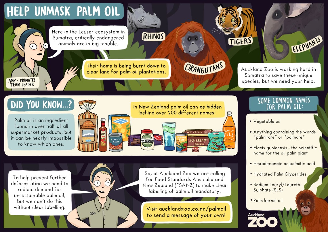 Help Unmask Palm Oil, a handy wallet-sized download to help you at the supermarket, from Auckland Zoo, illustrated by Giselle Clarkson, reproduced with kind permission.