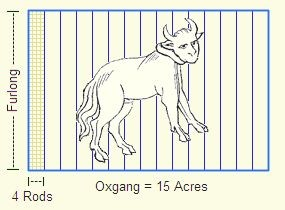 Machine generated alternative text: Ill*  Oxgang = 15 Acres  4 Rods