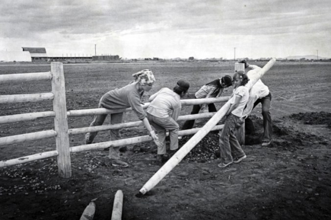 Figure 38. People of all ages came to lend a hand