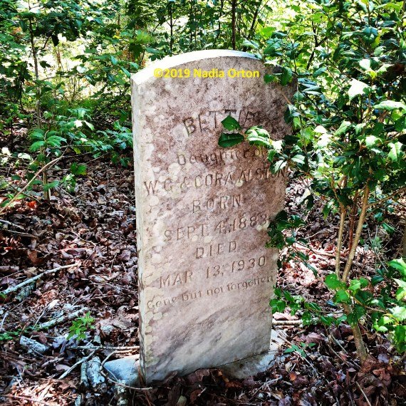 Nash County, North Carolina: Exploring an undocumented cemetery in Nash…