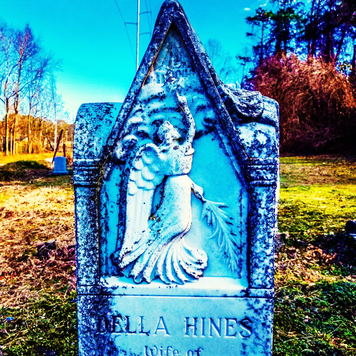 Wilson County, North Carolina: The gravestone of Mrs. Della Hines Barnes