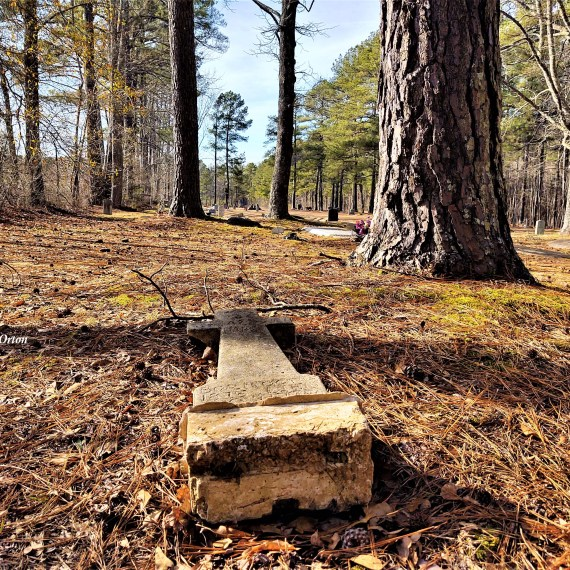 Halifax County, North Carolina: An accidental cemetery…