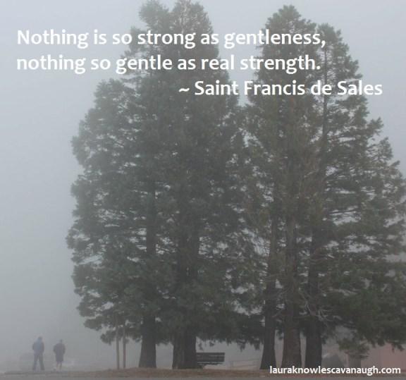 deSales_gentleness2
