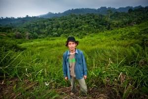 Rudi Putra Goldman Prize forest conservation Indonesia