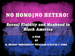 No Homo | No Hetero and Socially Engaged Arts Reception In DC Jan 25