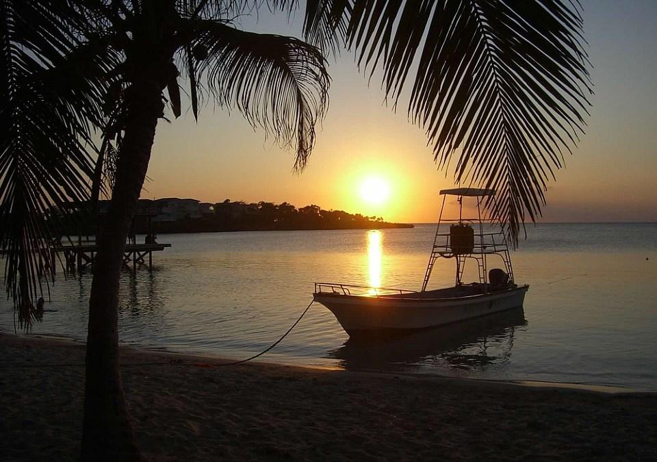 My Island Life