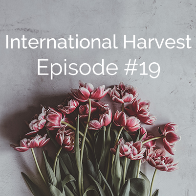 International Harvest #19: Autumn's Story
