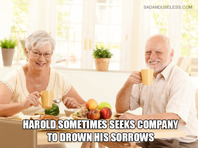 Hide The Pain Harold Describes What It Is Like To Become A Famous