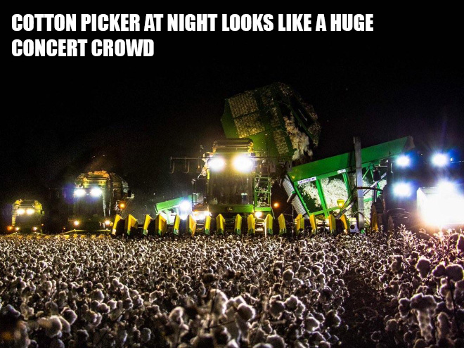 Cotton picker at night looks like a huge concert crowd.