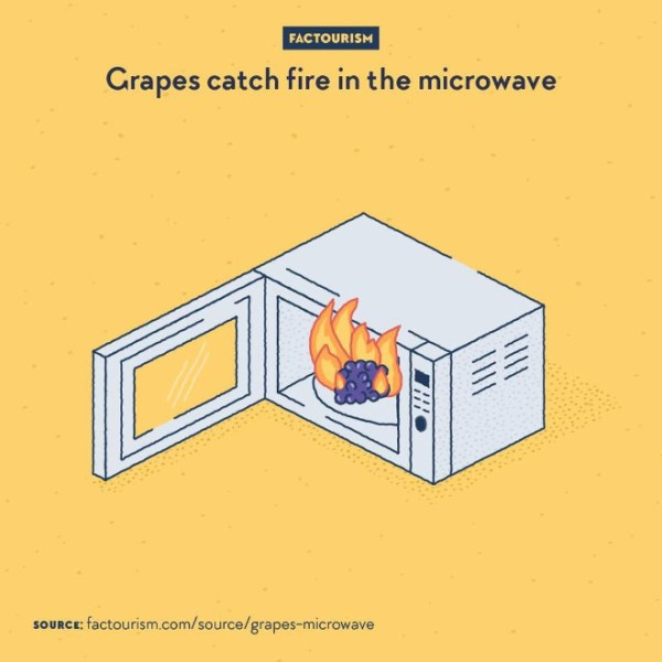When grapes are put in a microwave oven, especially when cut in two, their shape and material refract the waves in a way that eventually ionise the sodium and potassium content of the fruit and create plasma that ignites and takes fire.