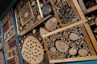 Bug Hotel at Alexandrea Park Hub