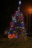 Denshaw tree lit up (By Carl Royle)