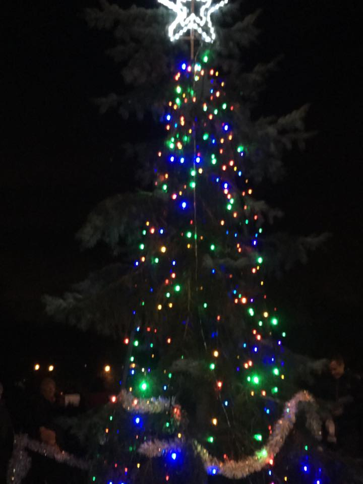 Greenfield's tree lit up (picture by Trevor Baxter)