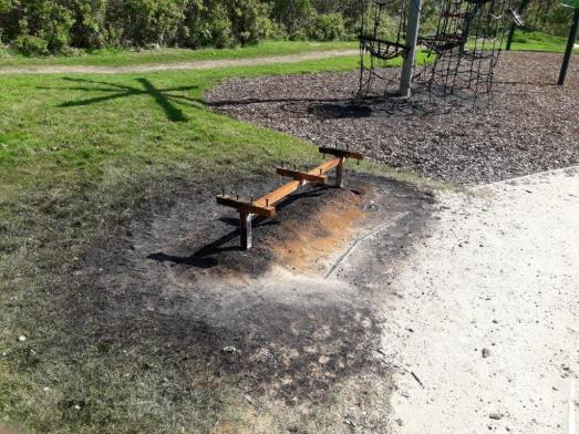 Lees Park arson attack (4)