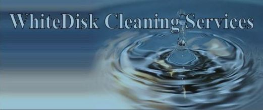 Logo-Whitedisk Cleaning Services