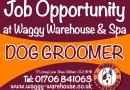 Job Vacancy: Waggy Spa are Hiring