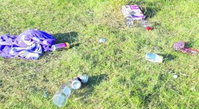 more Delph litter