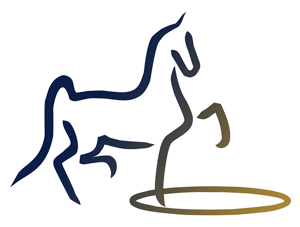SaddlebredShowcase