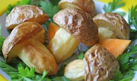 Картоп саңырауқұлақтары