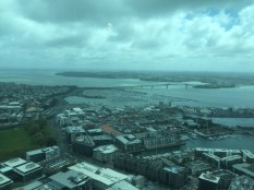 View from the top of Auckland's Skytower