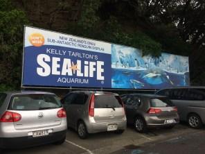 Kelly Tarlton's Aquarium- Auckland