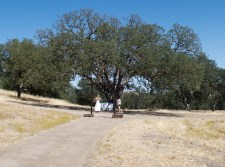 Wedding Site, Ranchos Dos Amantes