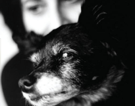 Photo of Buttons the dog and her owner Nadine M. Rosin