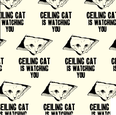 Cute Twitter background Ceiling cat is watching you