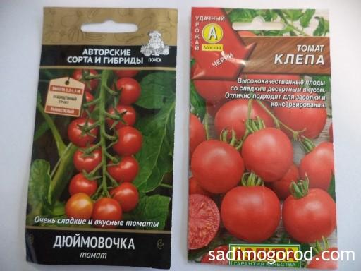 лучшие сорта томатов черри 1