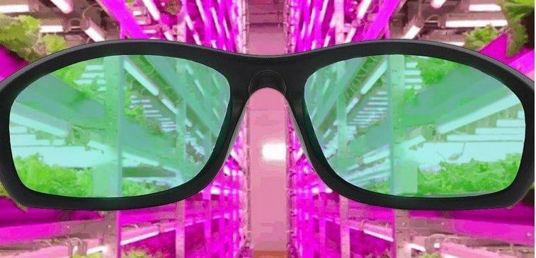 Apollo Horticulture Grow Light Goggles