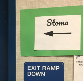 Stoma sign on the door out of my classroom.