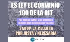 Ratificación del Convenio OIT Nº 190 por el Congreso de la Nación