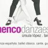 セビージャでの教室探し:Flamenco Danza